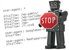 Как создать robots txt для всех поисковиков