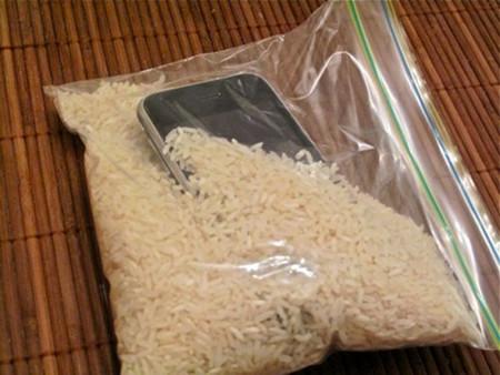 телефон в рисе