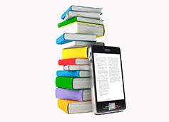 чтение книги в fb2