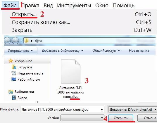 как открыть файл с помощью WinDjView
