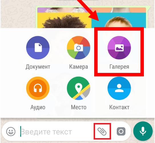 Ленинградом, приложение для отправки открыток в ватсапе